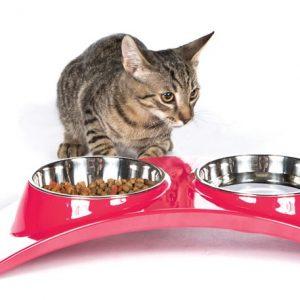 Миски и контейнеры для кошек
