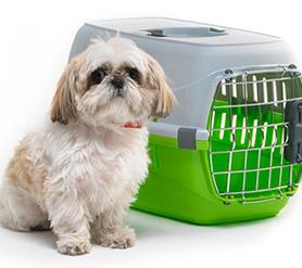 Переноски и сумки для собак