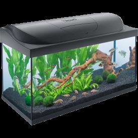 аквариумы Запорожье